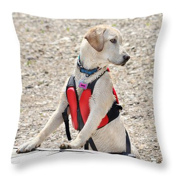 Riley Throw Pillow