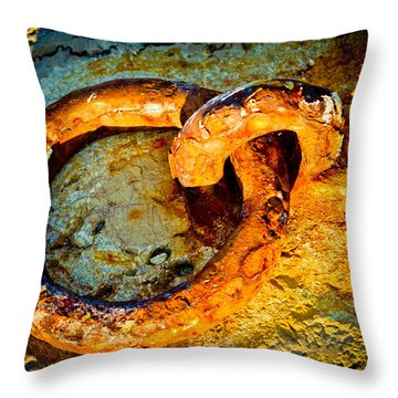 Ring On The Moor Throw Pillow by Raimond Klavins