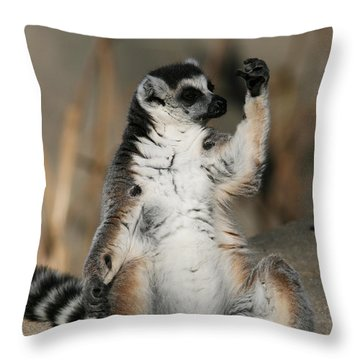 Throw Pillow featuring the photograph Ring-tailed Lemur by Judy Whitton