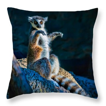 Ring-tailed Lemur Throw Pillow by Tim Stanley