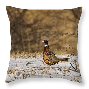 Ringer Throw Pillow