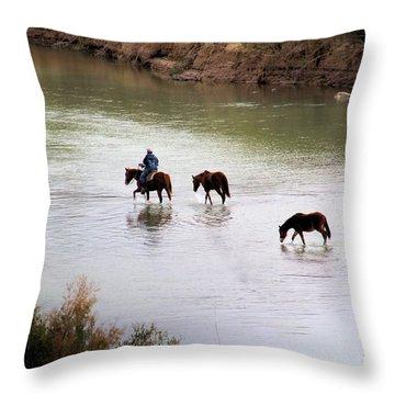 Rio Grande #4 Throw Pillow