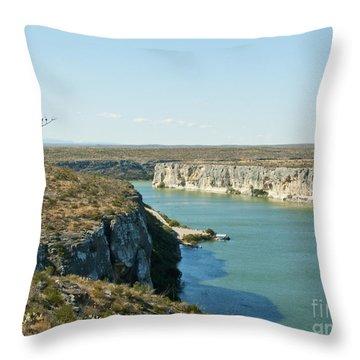 Throw Pillow featuring the photograph Rio Grande by Erika Weber