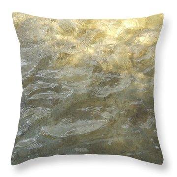 Rio Throw Pillow