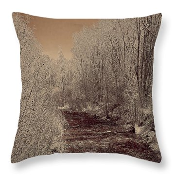 Rio Taos Bosque Iv Throw Pillow
