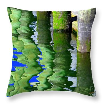 Ripple Reflections Throw Pillow by Ed Weidman