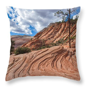 Throw Pillow featuring the photograph Rippled Rock At Zion National Park by John M Bailey