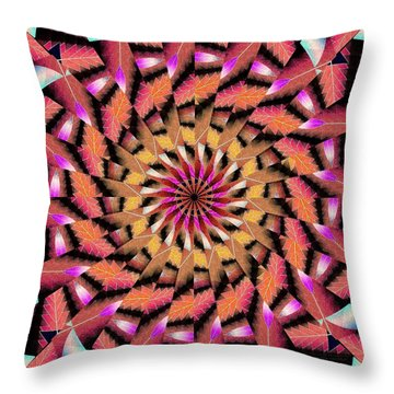 Rippled Source Kaleidoscope Throw Pillow