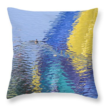 Ripples Throw Pillow by Alex Lapidus