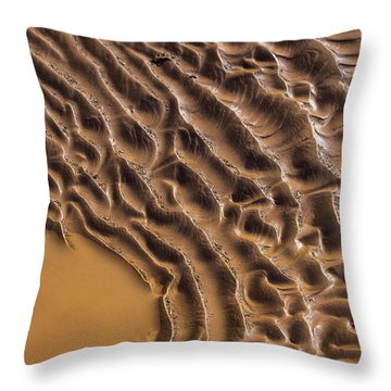 Ripples And Fins Throw Pillow