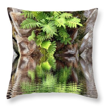 Ripples And Reflection Throw Pillow