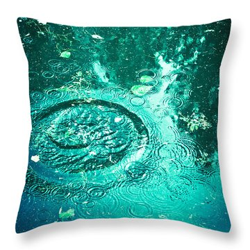Throw Pillow featuring the photograph Ripples by Jan Bickerton