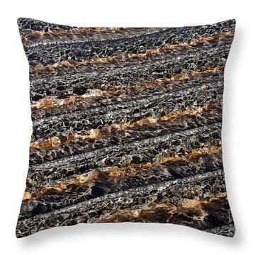 Ripples Throw Pillow by Steven Ralser