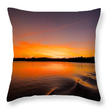 Rippling Throw Pillow