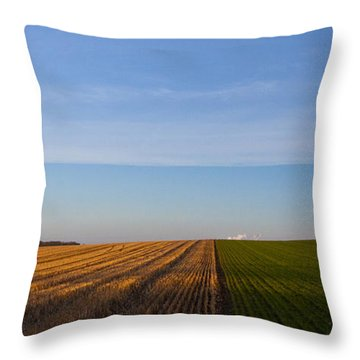 Raley Field Throw Pillows