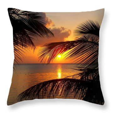 Rise And Behold Throw Pillow by Karen Wiles