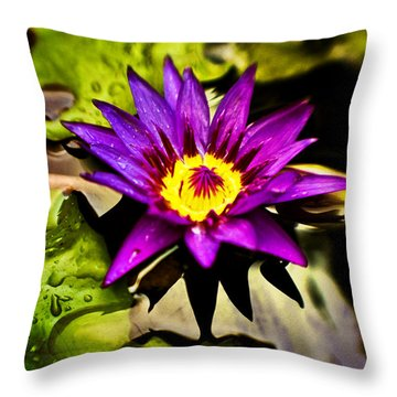Rise And Shine Throw Pillow by Scott Pellegrin