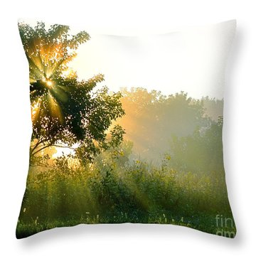 Rise And Shine Throw Pillow by Sue Stefanowicz