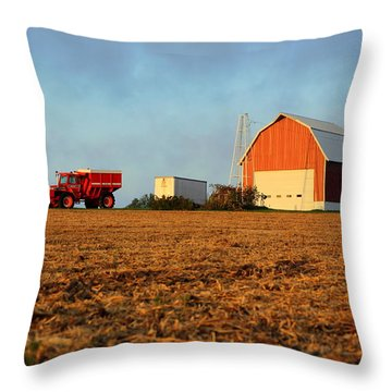Throw Pillow featuring the photograph Rise And Shine by Viviana  Nadowski