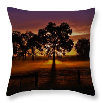 Rise Throw Pillow by Robert Geary