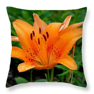 Rising Throw Pillow by Rodney Lee Williams