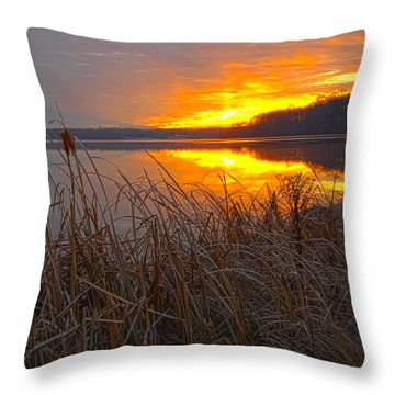 Throw Pillow featuring the photograph Rising Sunlights Up Shore Line Of Cattails by Randall Branham