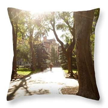 Rittenhouse In The Sun Throw Pillow by Christopher Woods