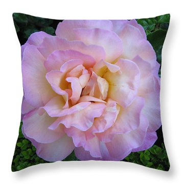Ritzy Pink Rose Throw Pillow