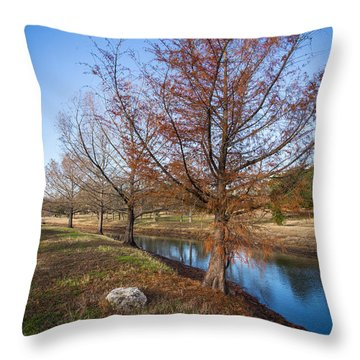 River And Winter Trees Throw Pillow