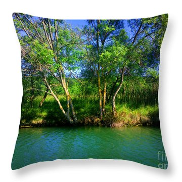 River Beauty Throw Pillow by Hanza Turgul