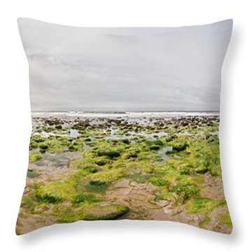 River Delta And Wetlands At Low Tide Throw Pillow