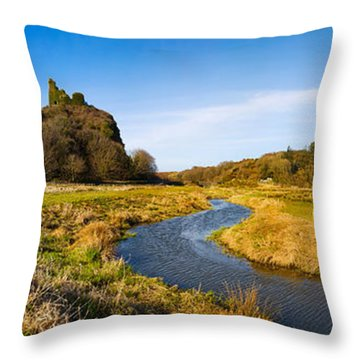 River Flowing Through Landscape Throw Pillow