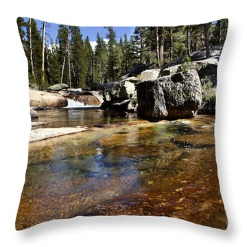 River Flows Throw Pillow by David Millenheft