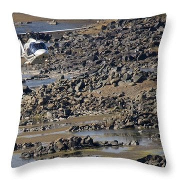 River Flying Throw Pillow by Paul Job