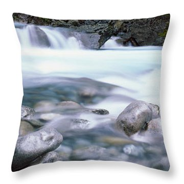 River, Hollyford River, Fiordland Throw Pillow by Panoramic Images