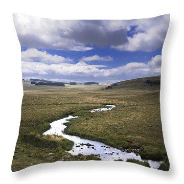 River In A Landscape Throw Pillow by Bernard Jaubert