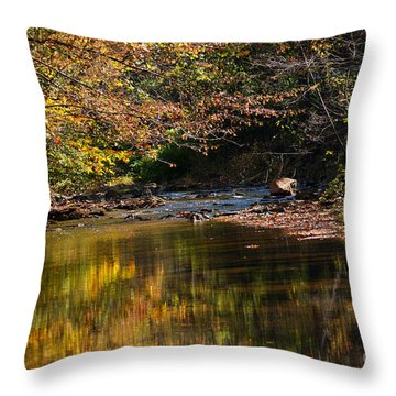 Throw Pillow featuring the photograph River In Autumn by Lisa L Silva