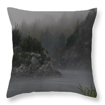 River Island Throw Pillow by Greg Patzer