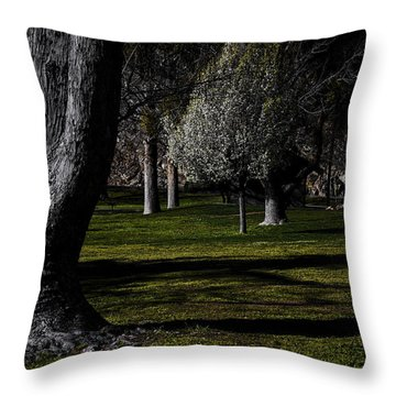 River Kern Park Throw Pillow