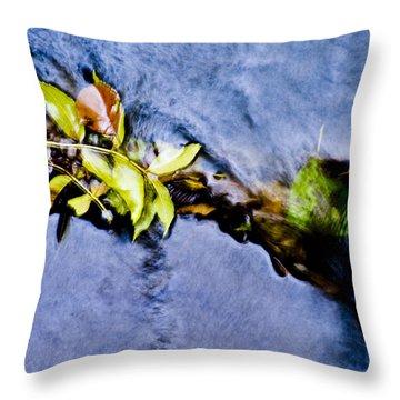 River Motion Throw Pillow