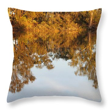 River Murray Reflections Early Evening Throw Pillow by Carole-Anne Fooks