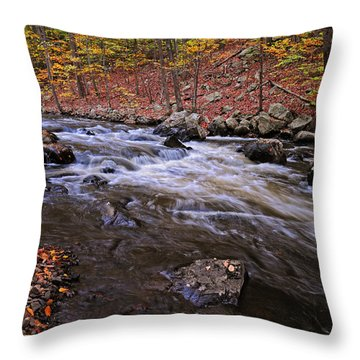 River Of Color Throw Pillow by Dave Mills
