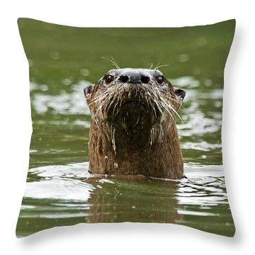 River Otter 1 Throw Pillow
