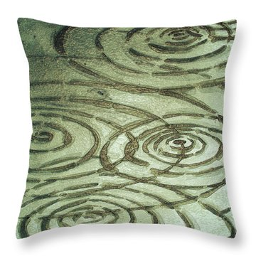River Ripples Throw Pillow