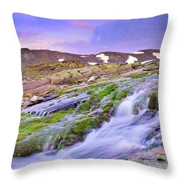 River San Juan Throw Pillow by Guido Montanes Castillo