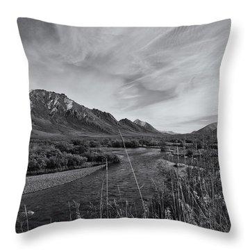 River Serenity Throw Pillow by Priska Wettstein