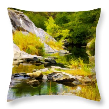 River Spirit Throw Pillow
