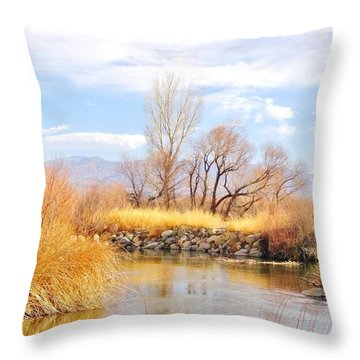 River Stone Throw Pillow