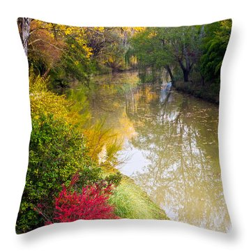 River With Autumn Colors Throw Pillow