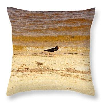 Throw Pillow featuring the photograph Riverbank Bird by Cassandra Buckley